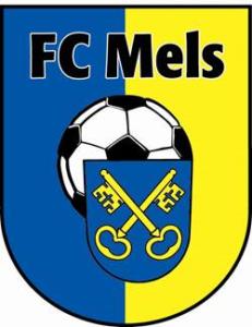 logo-fcmels