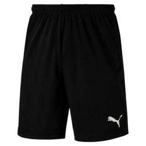 LIGA-Training-Shorts-Core